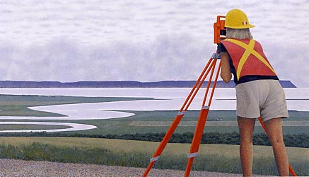 Surveyor, 2001