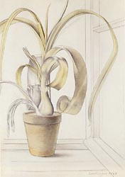 Foliage Plant by the Window, 1929